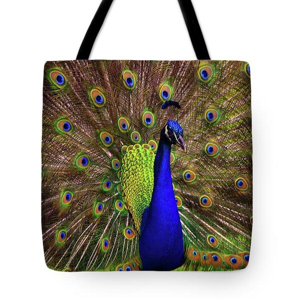 Peacock Showing Breeding Plumage In Jupiter, Florida Tote Bag