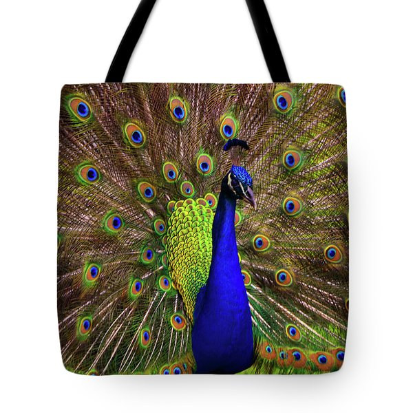 Tote Bag featuring the photograph Peacock Showing Breeding Plumage In Jupiter, Florida by Justin Kelefas