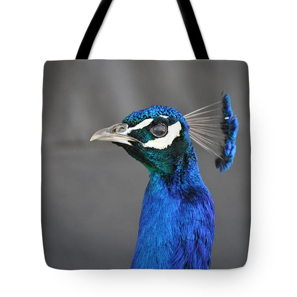 Peacock Stare Down Tote Bag