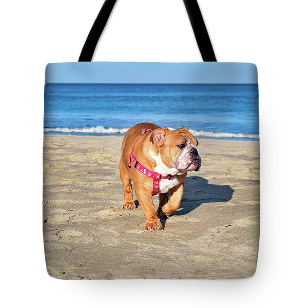 Peanut On The Beach Tote Bag