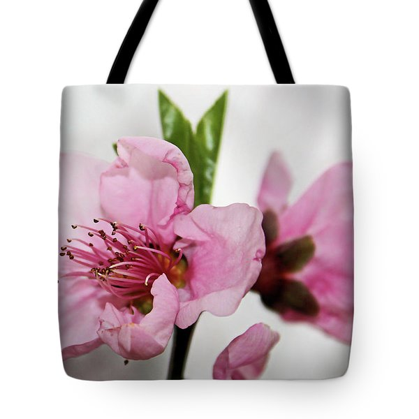 Tote Bag featuring the photograph Plum Blossom by Kristin Elmquist