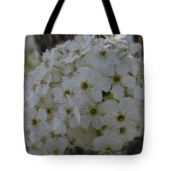 Pear Blossoms Tote Bag