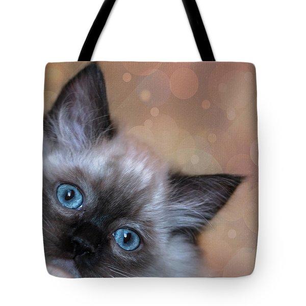 Peek-a-boo 2 Tote Bag