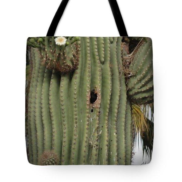 Peek-a-boo Cactus Wren Tote Bag