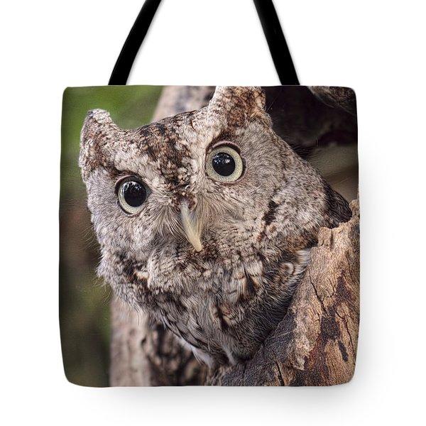 Peek A Boo Tote Bag by Cheri McEachin