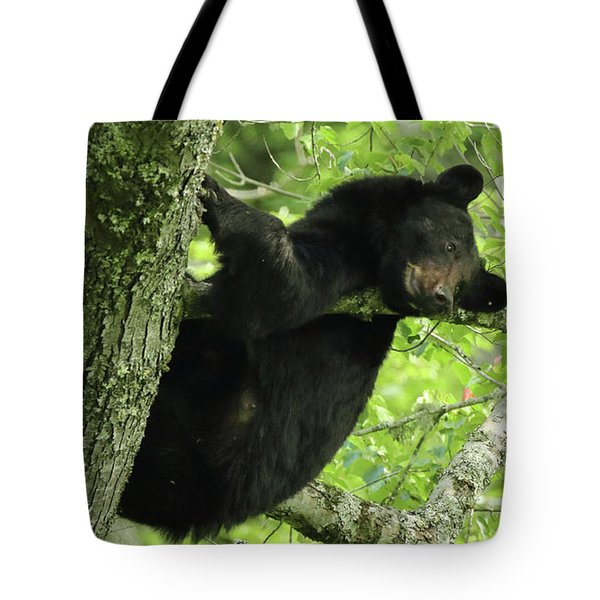 Tote Bag featuring the photograph Peek A Boo by Coby Cooper