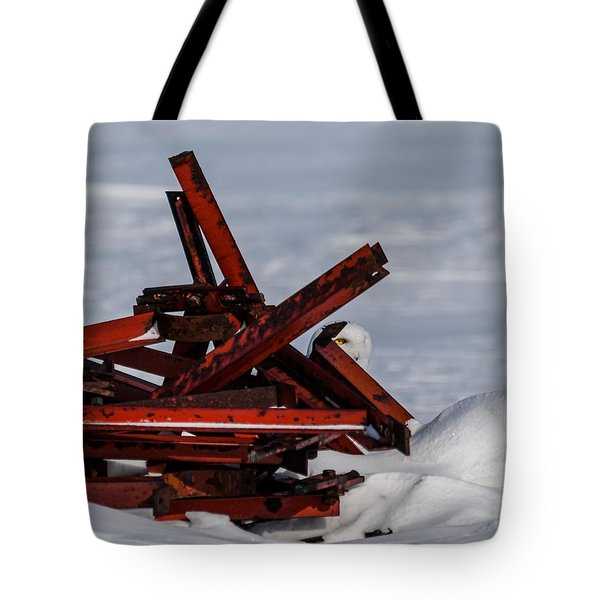 Tote Bag featuring the photograph Peek-a-boo by Dan Traun