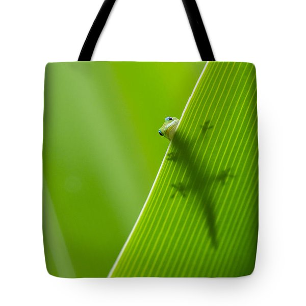 Peek A Boo Gecko Tote Bag by Christina Lihani
