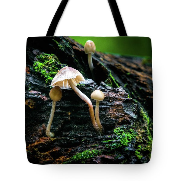 Tote Bag featuring the photograph Peek-a-boo Mushroom by Dennis Dame