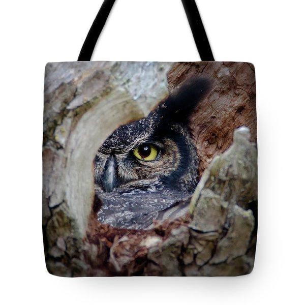 Peek A Boo Owl Tote Bag