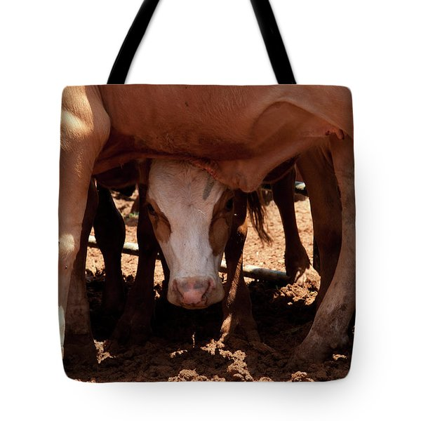 Tote Bag featuring the photograph Peek-a-boo by Roger Mullenhour