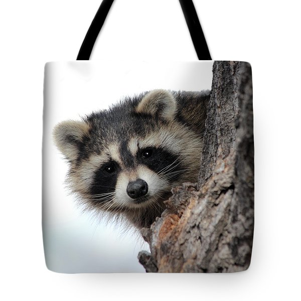 Tote Bag featuring the photograph Peek-a-boo by Shane Bechler