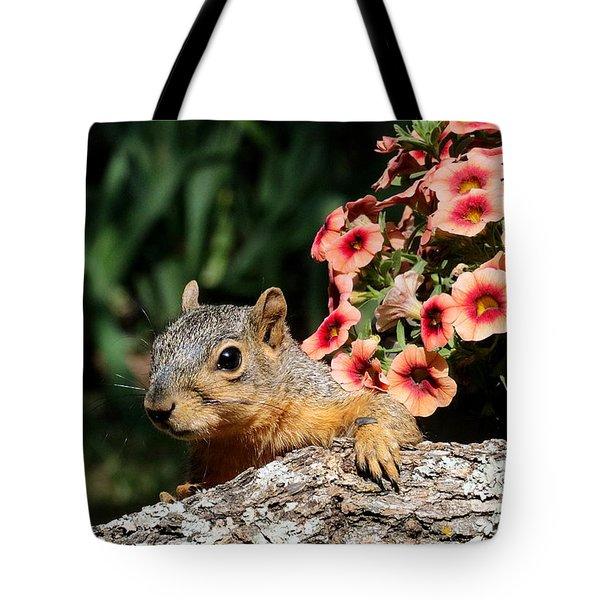 Peek-a-boo Squirrel Tote Bag
