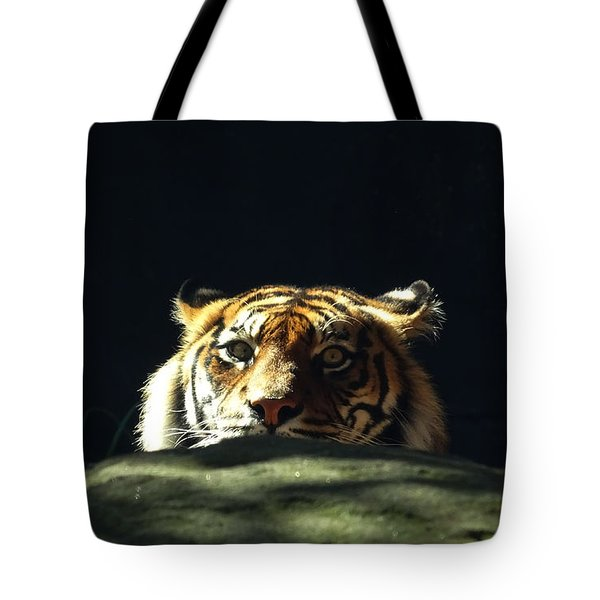Tote Bag featuring the photograph Peek-a-boo Tiger by Angela DeFrias