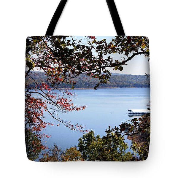 Peek-a-view Tote Bag by Betty Northcutt