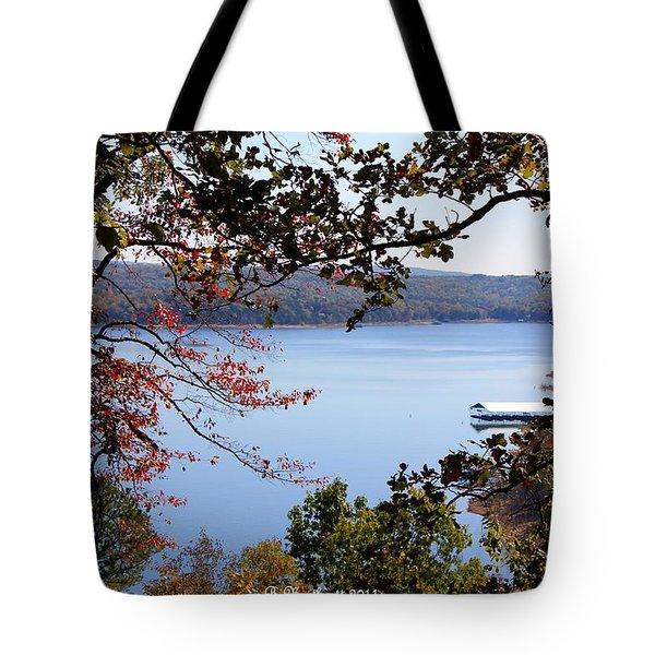 Peek-a-view Tote Bag