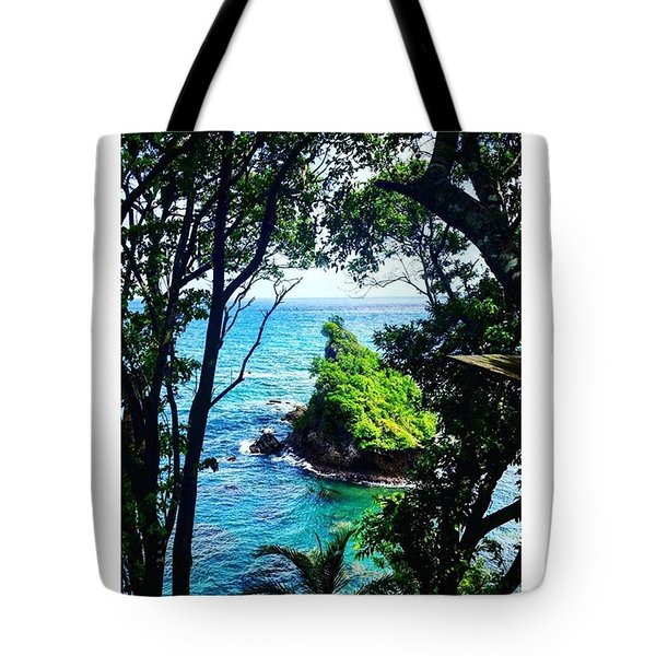 Peek Into A Tropical Paradise Tote Bag by Vicki Giannakopoulos