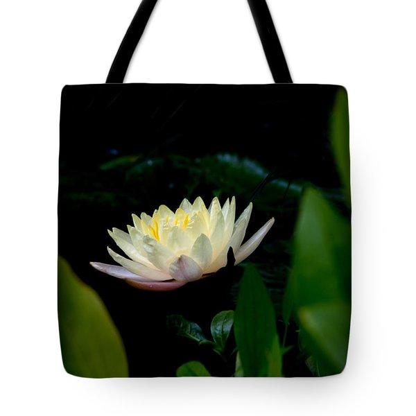 Peekaboo Lemon Water Lily Tote Bag