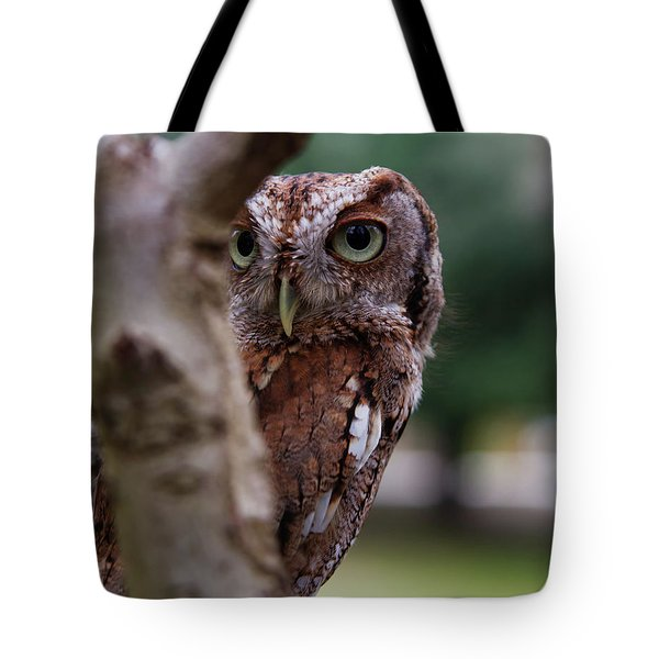 Tote Bag featuring the photograph Peekaboo Pablo by Arthur Dodd