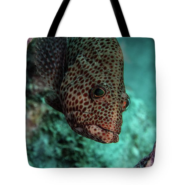 Tote Bag featuring the photograph Peeking Coney by Jean Noren