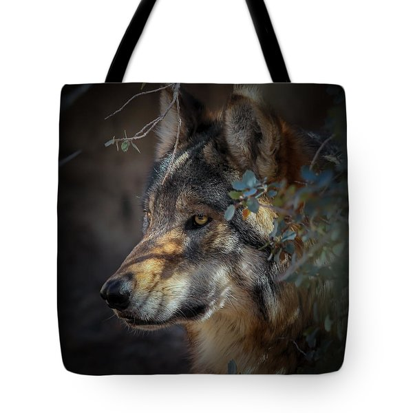 Peeking Out From The Shadows Tote Bag