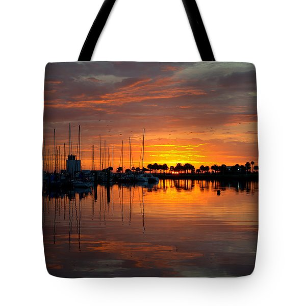 Peeking Sun Tote Bag