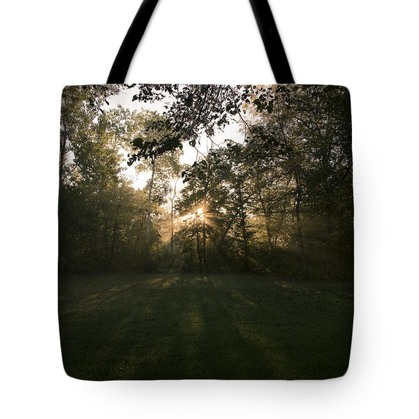 Peeking Through Tote Bag by Annette Berglund