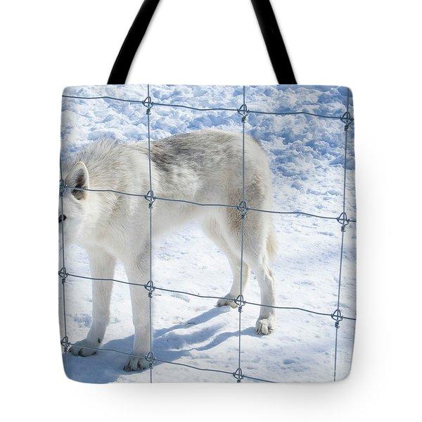 Peer Tote Bag
