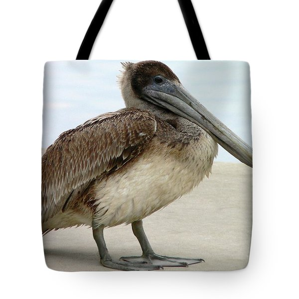 Pelican Close-up Tote Bag by Al Powell Photography USA