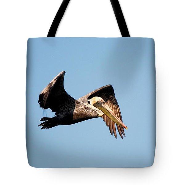 Pelican In Flight Tote Bag