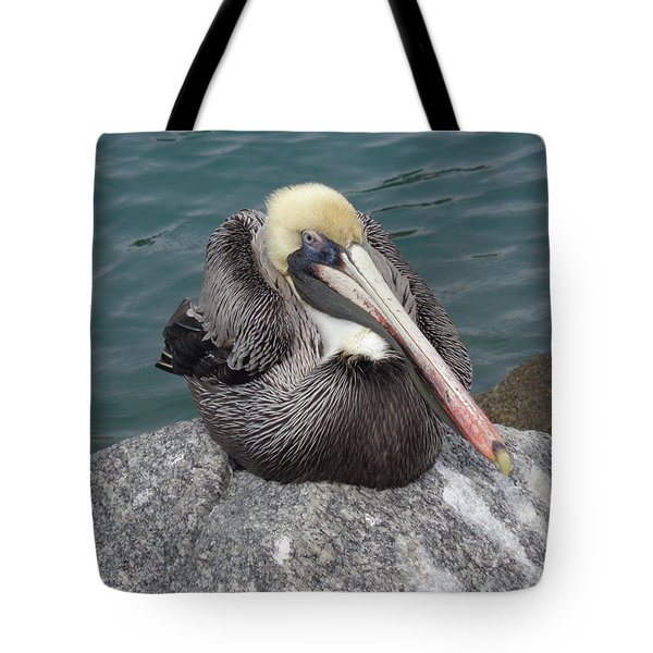 Tote Bag featuring the photograph Pelican by John Mathews