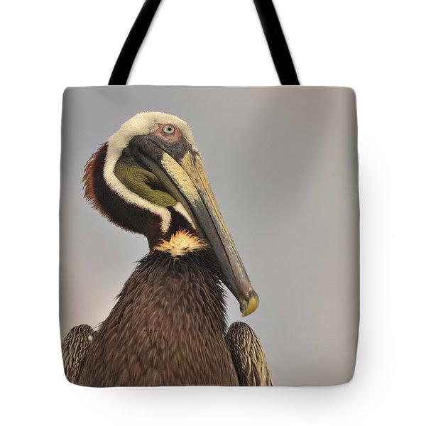 Pelican  Tote Bag by Nancy Landry