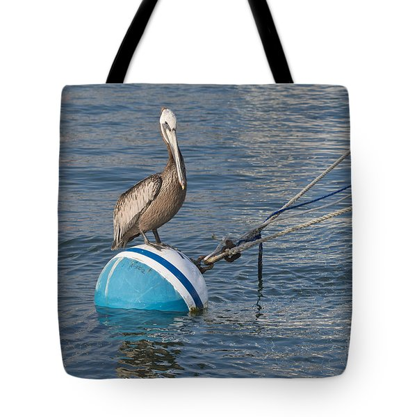 Pelican On A Buoy Tote Bag