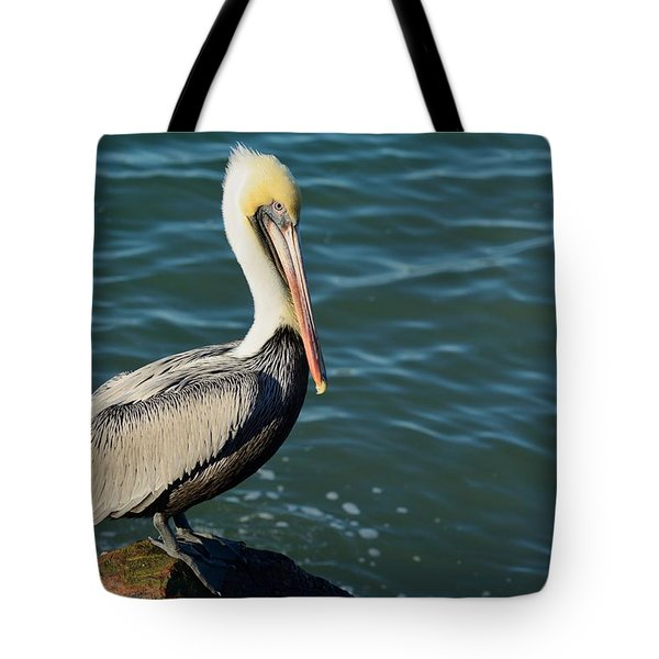Tote Bag featuring the photograph Pelican On A Rock by Bradford Martin