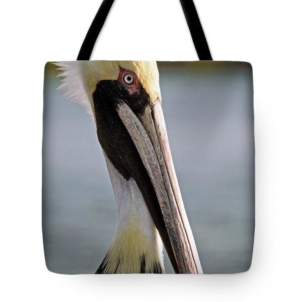 Pelican Portrait Tote Bag by Sally Weigand