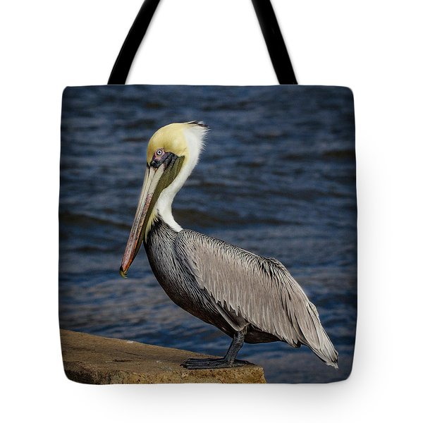 Tote Bag featuring the photograph Pelican Profile 2 by Jean Noren