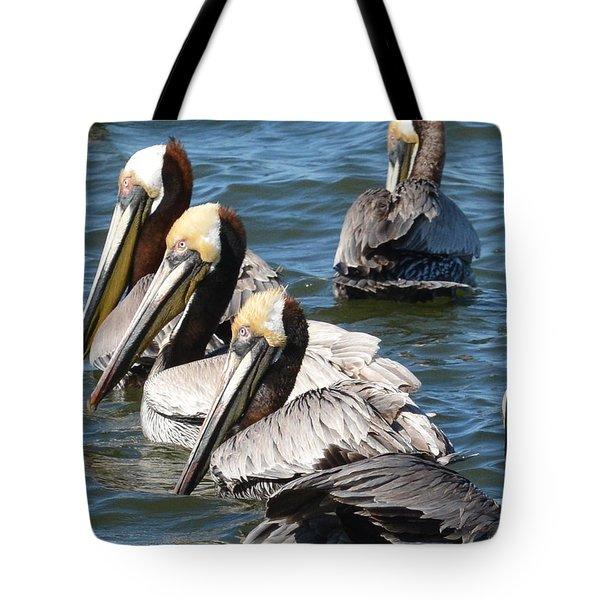 Pelican Profiles Tote Bag