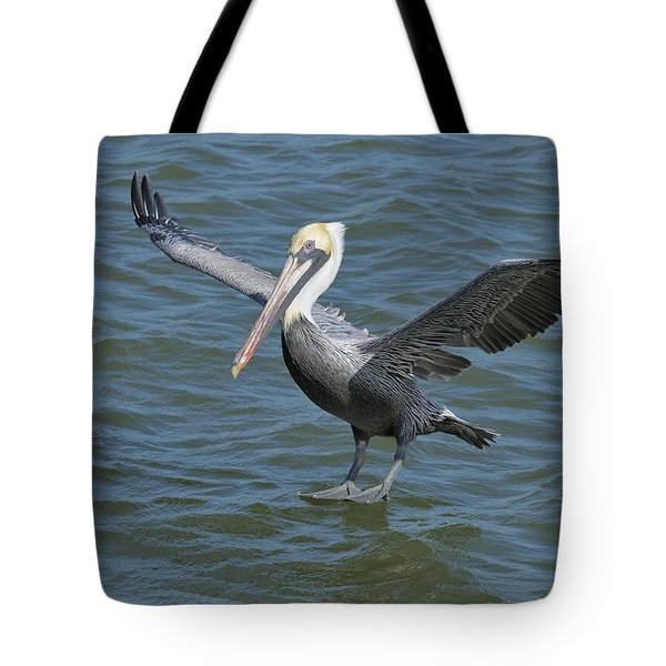 Tote Bag featuring the photograph Pelican Walks On Water by Bradford Martin
