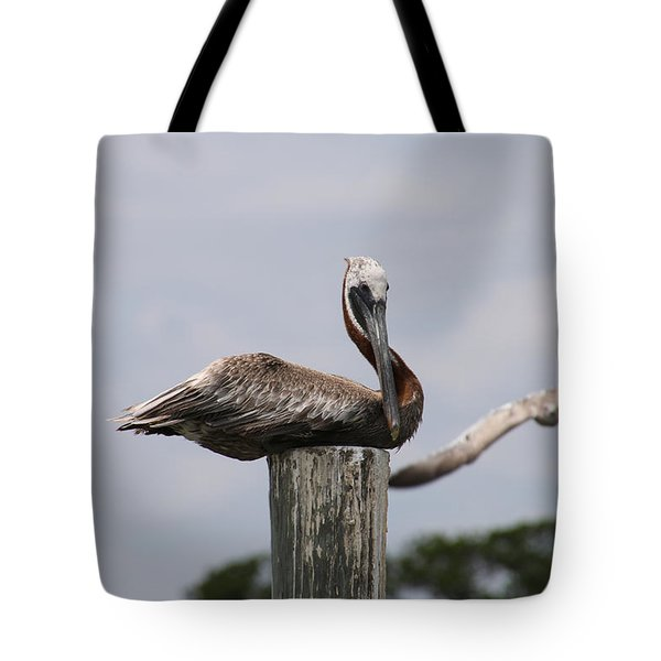 Pelican Watch Tote Bag