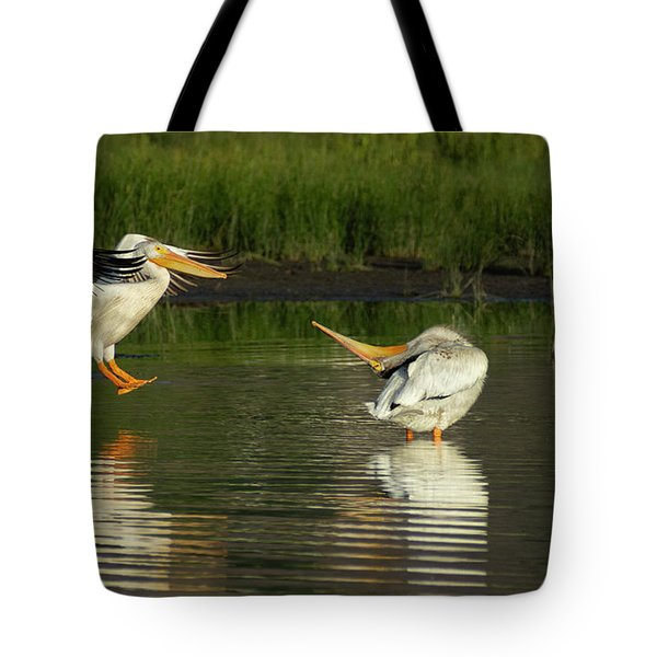 Pelicans 2 Tote Bag