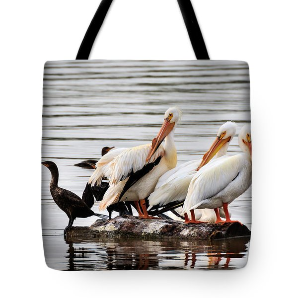Pelicans And Cormorants Tote Bag