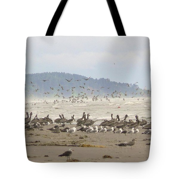 Pelicans And Gulls Tote Bag by Pamela Patch