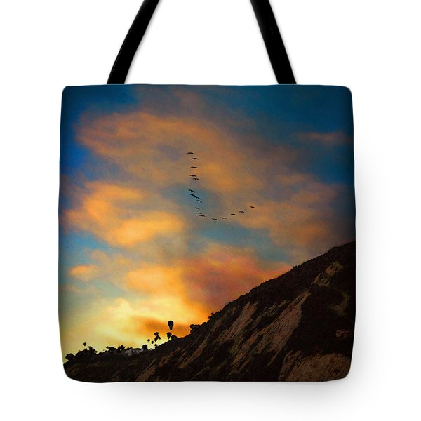 Pelicans At Arroyo Burro Tote Bag