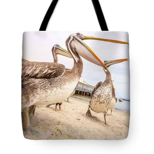 Tote Bag featuring the photograph Pelicans by Gary Gillette