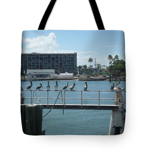 Pelicans In A Row Tote Bag