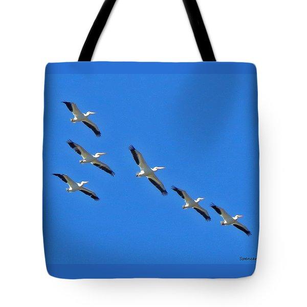 Pelicans In Blue Tote Bag