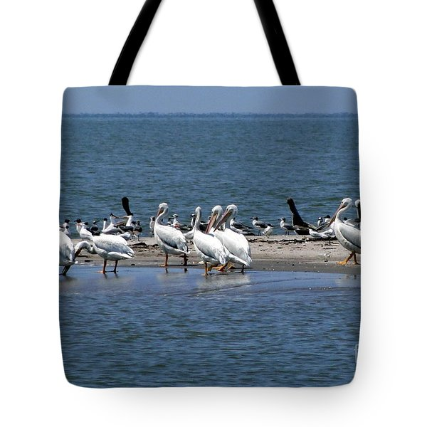 Pelicans Island Tote Bag
