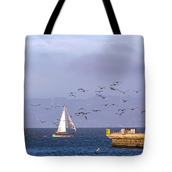 Tote Bag featuring the photograph Pelicans Pelicans by Kate Brown