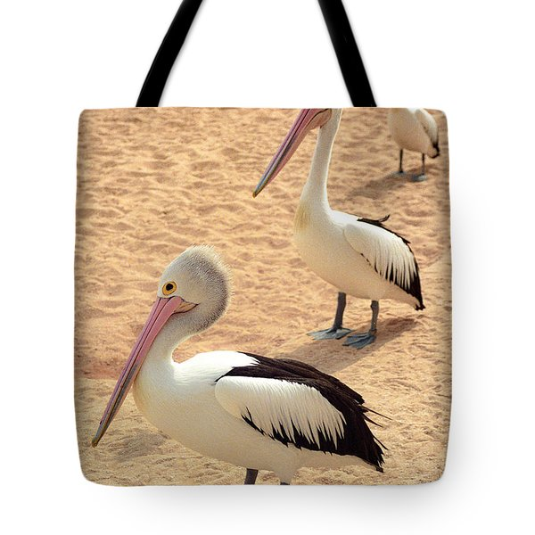 Pelicans Seriously Chillin' Tote Bag