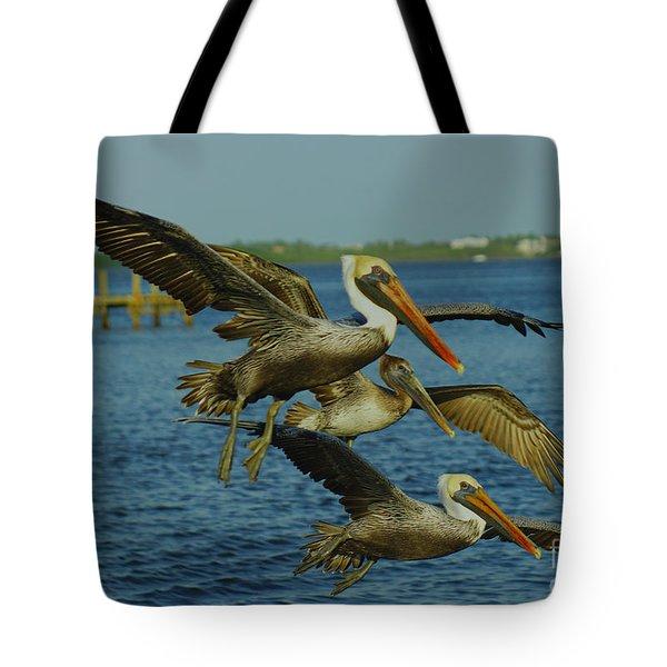 Pelicans Three Amigos Tote Bag by Larry Nieland